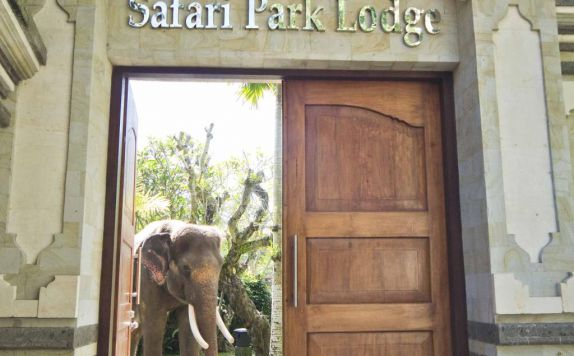Elephant Safari Park Lodge Bali