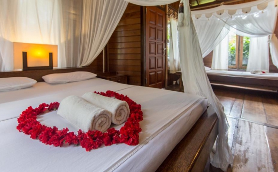 guest room di Living Colours Diving Resort