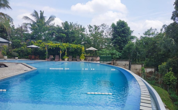 Swimming Pool di Hotel Deli River