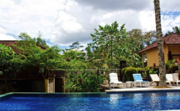 swimming pool di Puri Saron Gianyar